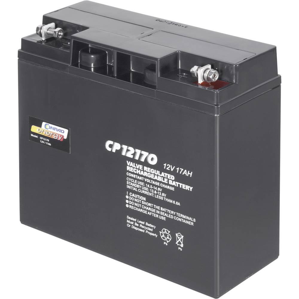 Svinčev akumulator 12 V 17 Ah Conrad energy CE12V/17Ah 250214 svinčevo-koprenast (AGM) 181 x 167 x 76 mm M5-vijačni priklop