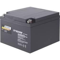 Svinčev akumulator 12 V 24 Ah Conrad energy CE12V/24Ah 250226 svinčevo-koprenast (AGM) 175 x 125 x 167 mm M5-vijačni priklop