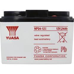 Svinčev akumulator 12 V 24 Ah Yuasa NP24-12 svinčevo-koprenast (AGM) 166 x 125 x 175 mm M5-vijačni priklop, brez vzdrževanja