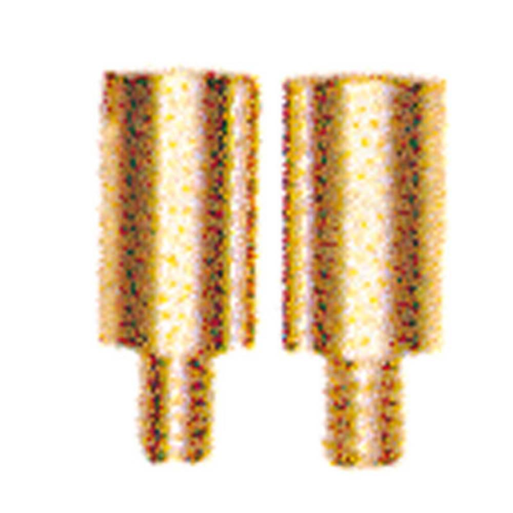 beholder STB 14/D6/4/M3 SAK10 0169900000 Weidmüller 50 stk