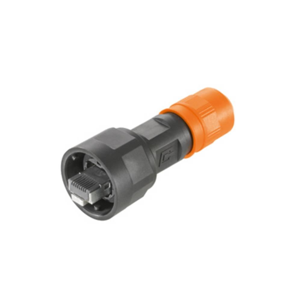 Sensor-/Aktor-datastikforbinder Stik, lige Weidmüller 1012490000 IE-PS-V01P-RJ45-FH 10 stk