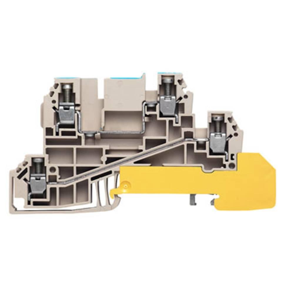 Distribution terminal med WQV Weidmüller WDL 2.5/N/L/PE 1029900000 50 stk