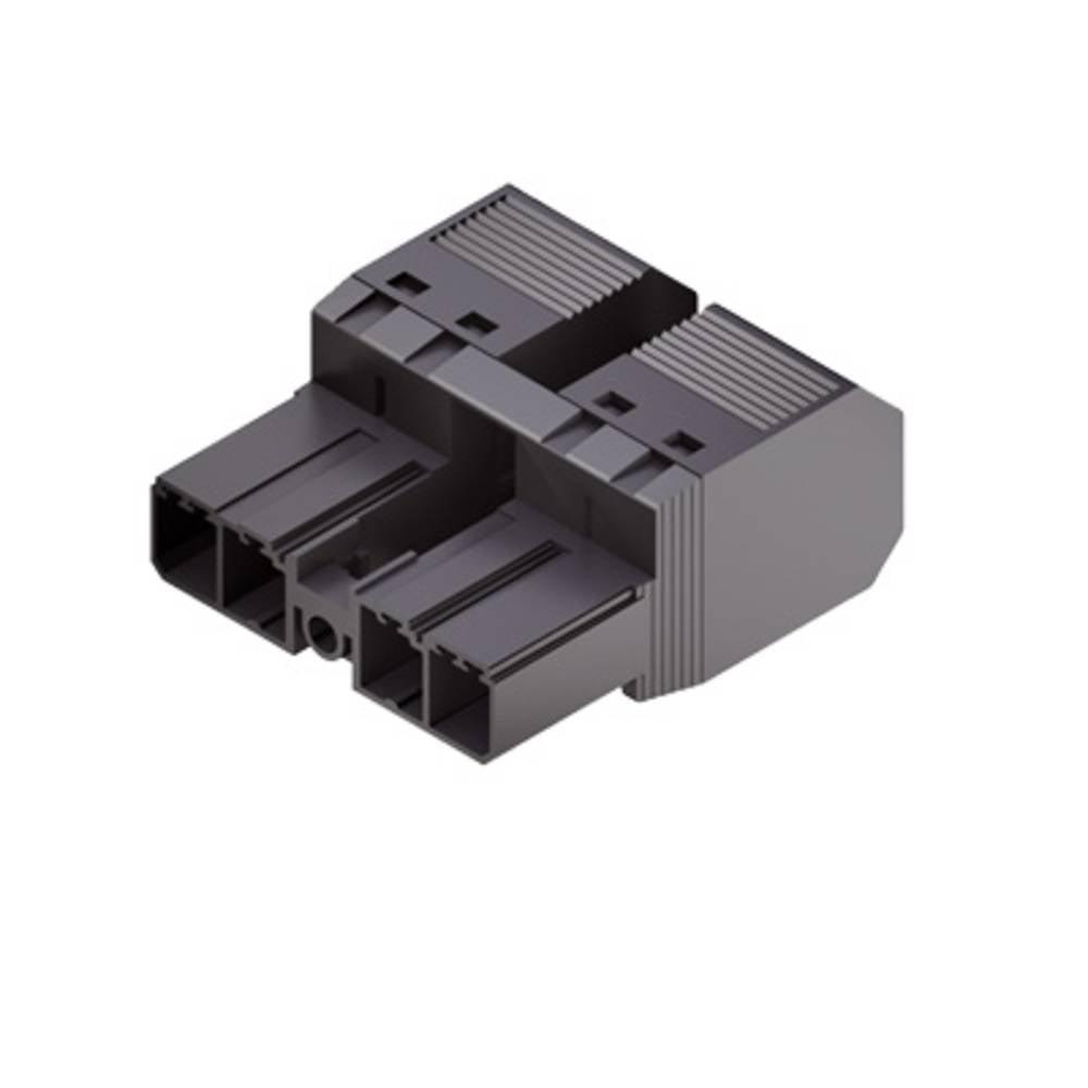 Stiftkabinet-kabel BV/SV (value.1360606) Samlet antal poler 2 Weidmüller 1061110000 Rastermål: 7.62 mm 65 stk