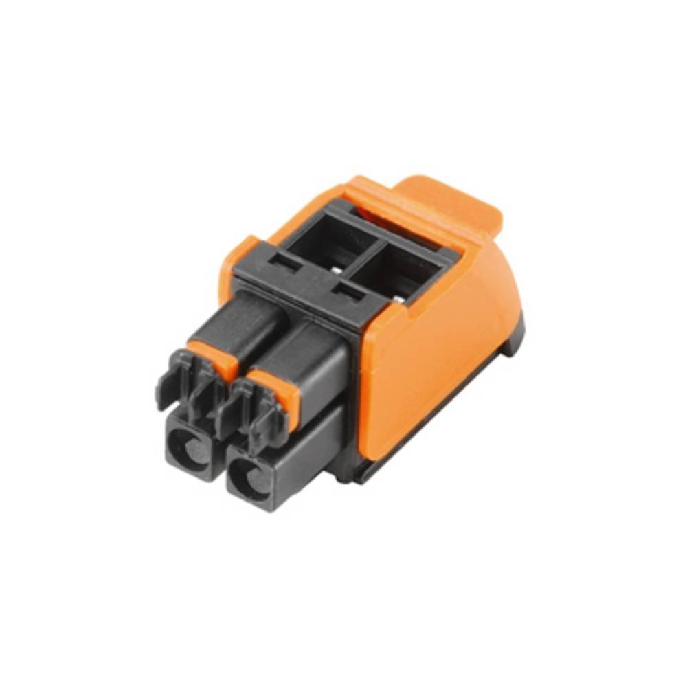 Weidmüller Vtični konektor za tiskana vezja (D x Š x V) 14.6 x 12.4 x 29 mm