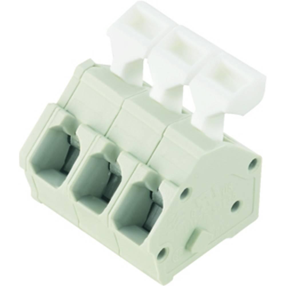 Fjederkraftsklemmeblok Weidmüller LMZFL 5/5/135 3.5SW 2.50 mm² Poltal 5 Sort 100 stk