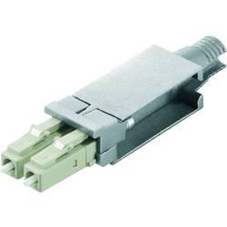 Priključek za optiko, oprema Weidmüller IE-PI-2 lcd-MM vložek