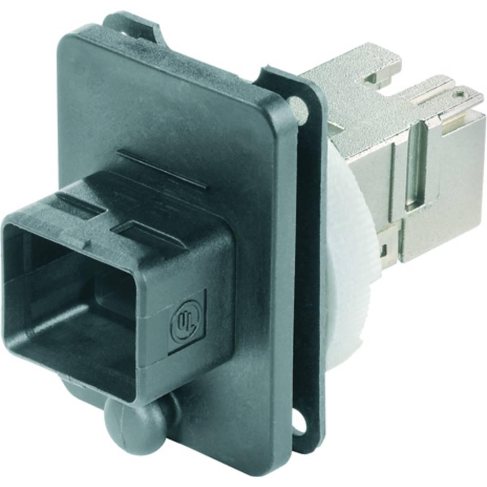 Priključek za optiko Weidmüller IE-BS-V04P-RJ45-C vtičnica