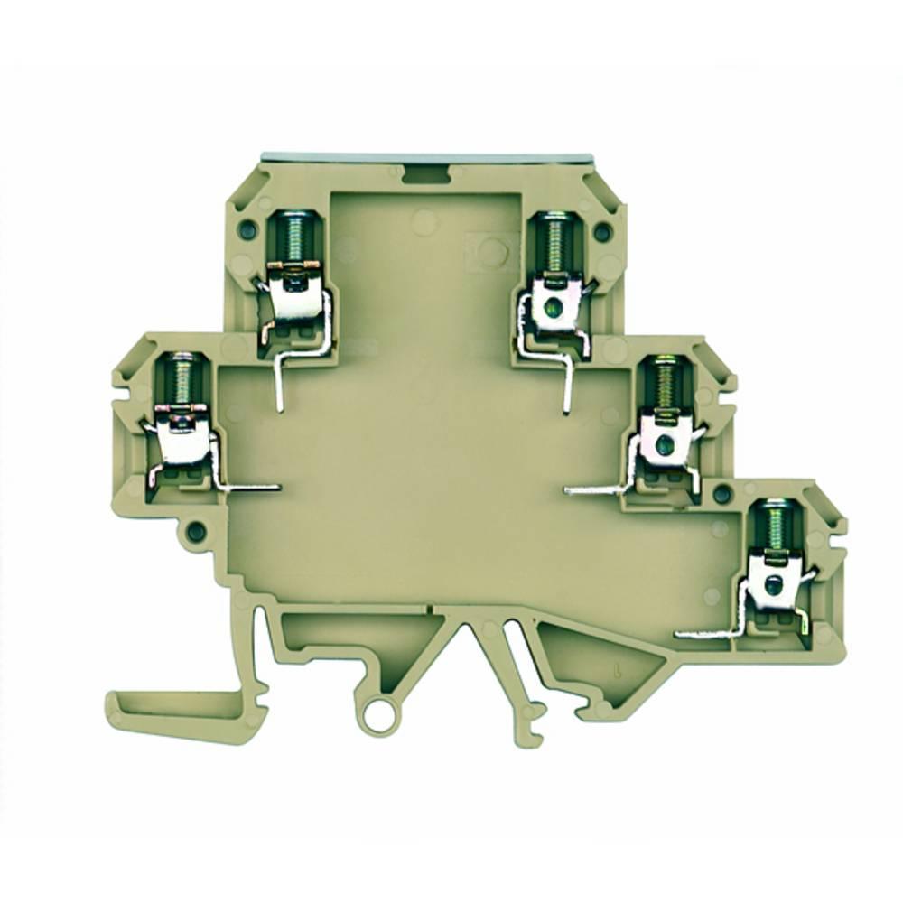 DIN-skinnekabinet dæksel Weidmüller KOEL POCON 20 x 50 x 80 50 stk