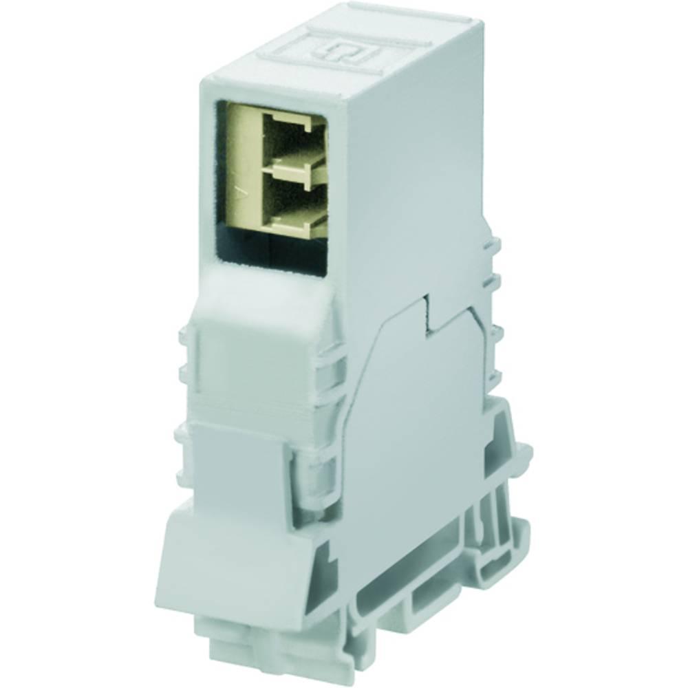 Priključek za optiko Weidmüller IE-TO-LCD MM vtični konektor