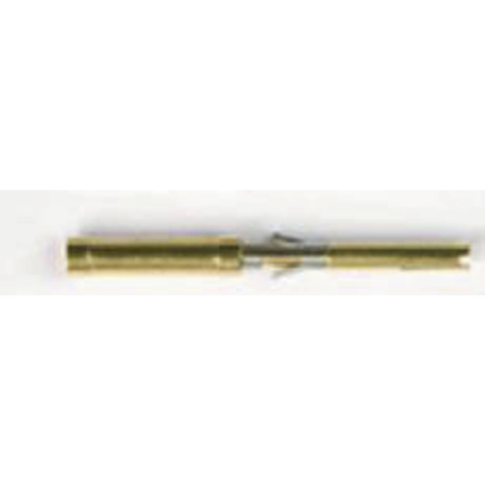 Vtični kontakt, , izvedba: vtični kontakt, za 16 in 22 polne vtiče SA3542/S ESKA Bulgin vsebuje: 1 paket