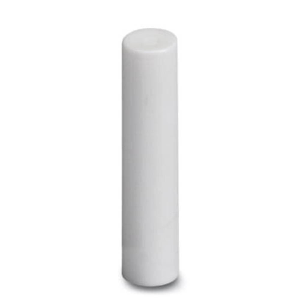 Slepi čep, bele barve Phoenix Contact KDT-ST 6 25 kosov