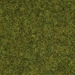 Strøgræs Eng NOCH 50220 Eng