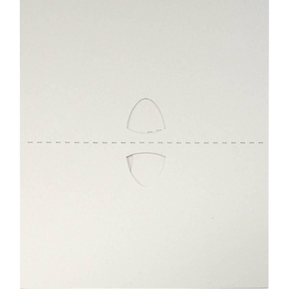Lepilna folija za past za žuželke Glupac Flypod INF252, 6 kosov