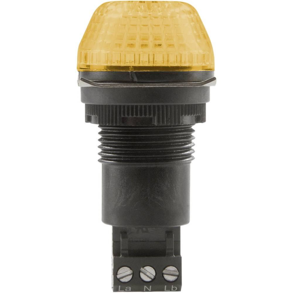 Signalna luč LED Auer Signalgeräte IBS oranžna neprekinjena luč, utripajoča luč 230 V/AC