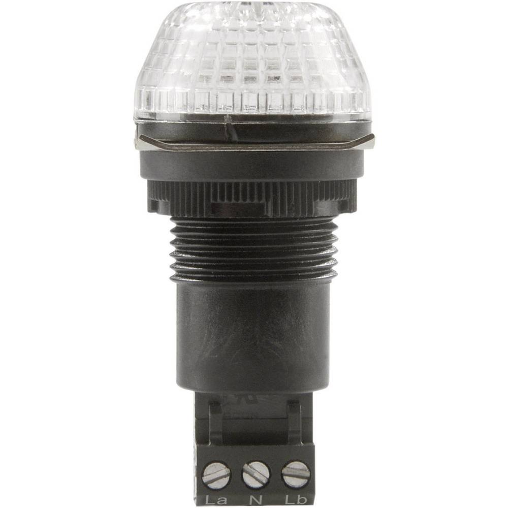 Signalna luč LED Auer Signalgeräte IBS jasna neprekinjena luč, utripajoča luč 24 V/DC, 24 V/AC