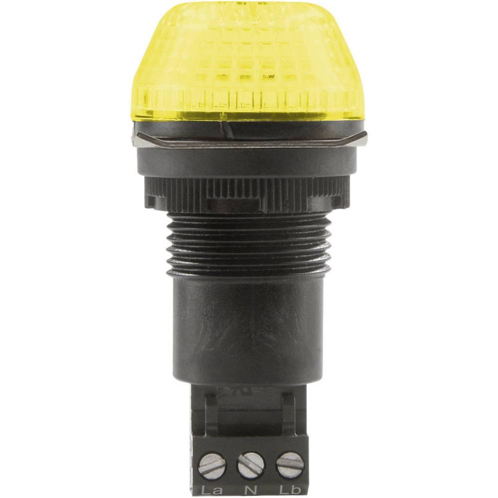 Signalna luč LED Auer Signalgeräte IBS rumena neprekinjena luč, utripajoča luč 230 V/AC