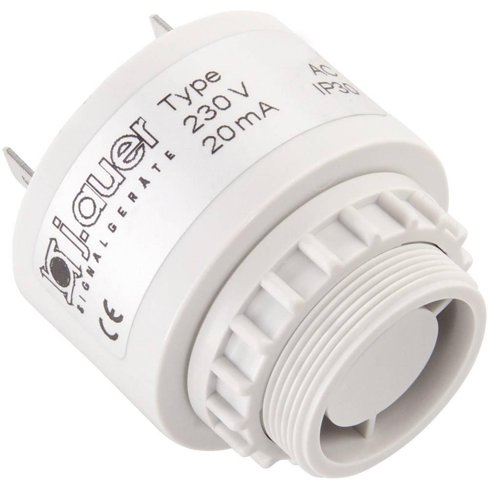 Signalni brenčač Auer Signalgeräte ESP pulzirajoč ton 230 V/AC 90 dB