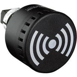 Signalni brenčač Auer Signalgeräte ESG neprekinjen ton, pulzirajoč ton, Wobbelton 12 V/DC, 12 V/AC, 24 V/DC, 24 V/AC 65 dB
