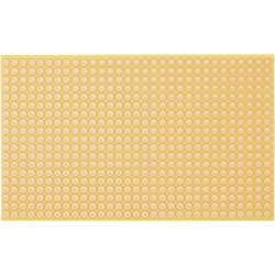 WR Rademacher Raster plošča stočkovnim rasterjem (D x S xV) 160 x 100 x 1,5 mm mere C-810-5