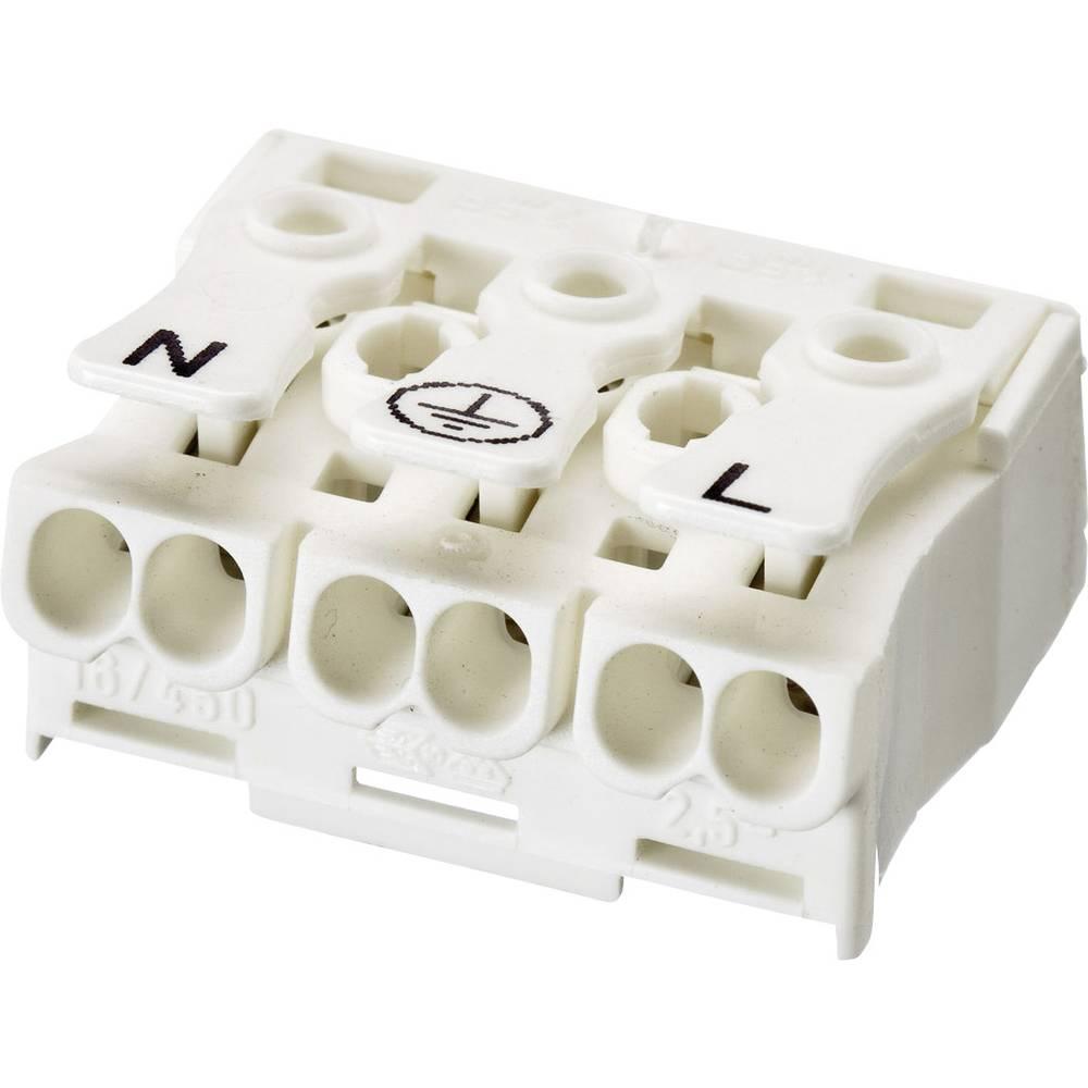 izdelek-elektricna-sponka-za-svetilkoadelscontact-precni-prerez-25mm
