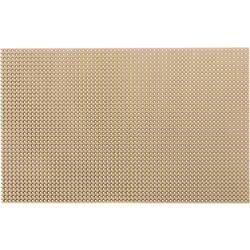WR Rademacher Raster plošča stočkovnim rasterjem (D xŠ xV) 160 x 100 x 1,5 mm mere VK C-811-5