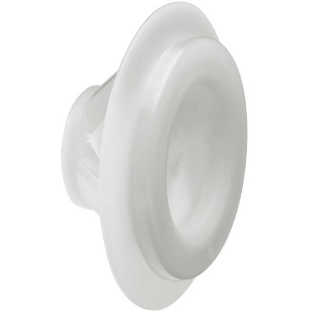 Kabelska uvodnica premer sponke (maks.) 13 mm poliamid, TPE (posebna gumijeva zmes nevtralnega vonja) svetlo sive barve (RAL 703