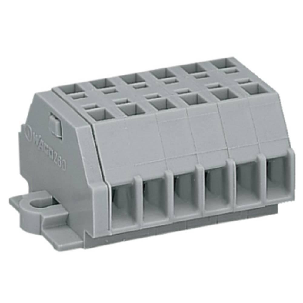 Klemmerække 5 mm Trækfjeder Belægning: L Grå WAGO 260-106 50 stk