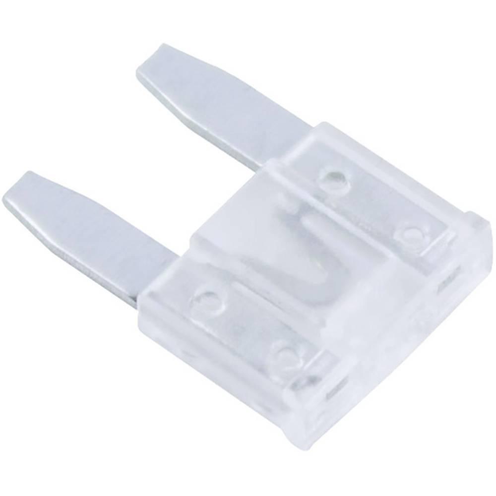 Avtomobilska mini ploščata varovalka za avto/industrijo, bela 32 V