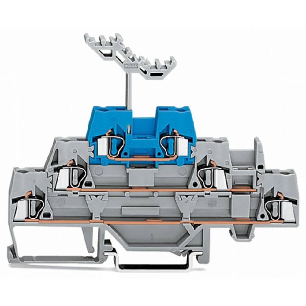 Trippel-gennemgangsklemme 5 mm Trækfjeder Grå, Blå WAGO 280-552 40 stk