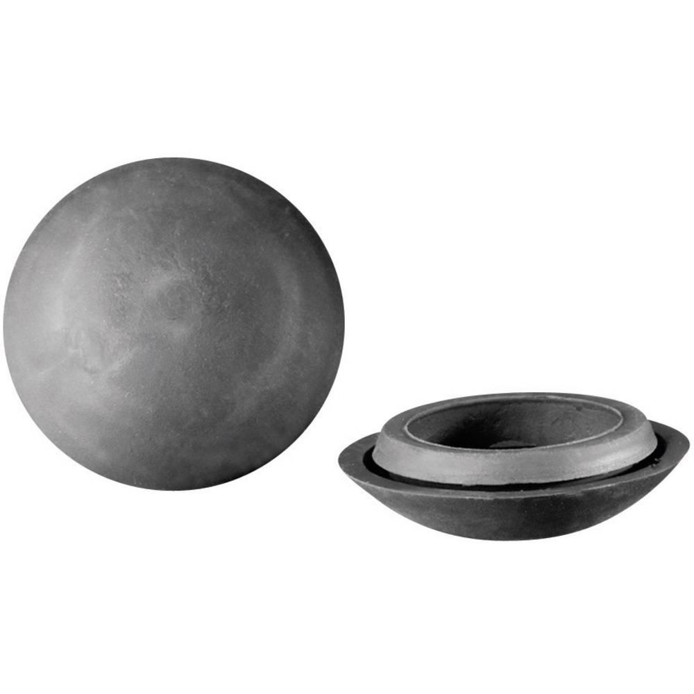 Pokrovček TPV Dunkel-sive barve PB Fastener 443 3833 1 kos