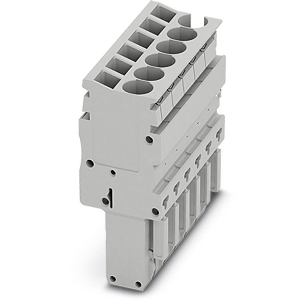 Plug SP-H 2,5 / 2 Phoenix Contact SP-H 2,5/ 2 Grå 50 stk