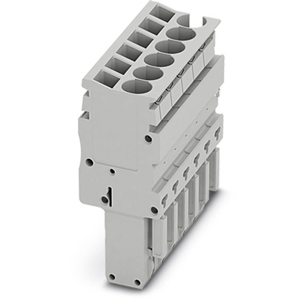 Plug SP-H 2,5 / 10 Phoenix Contact SP-H 2,5/10 Grå 25 stk
