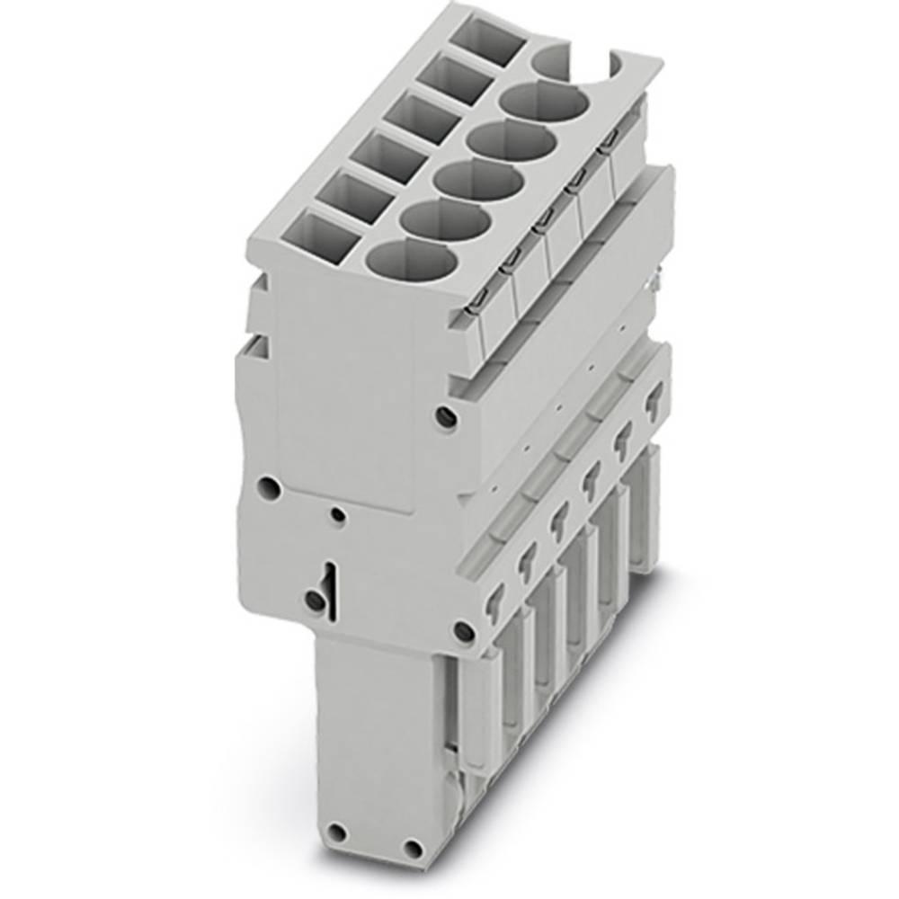 Plug SP-H 2,5 / 14 Phoenix Contact SP-H 2,5/14 Grå 10 stk