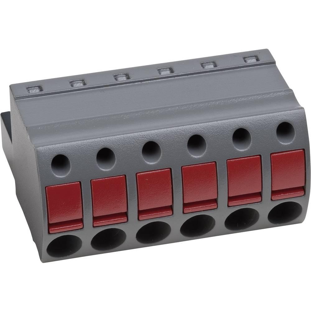 Tilslutningskabinet-kabel AK(Z)4951 (value.1360955) Samlet antal poler 2 PTR 54951020401D Rastermål: 5 mm 1 stk