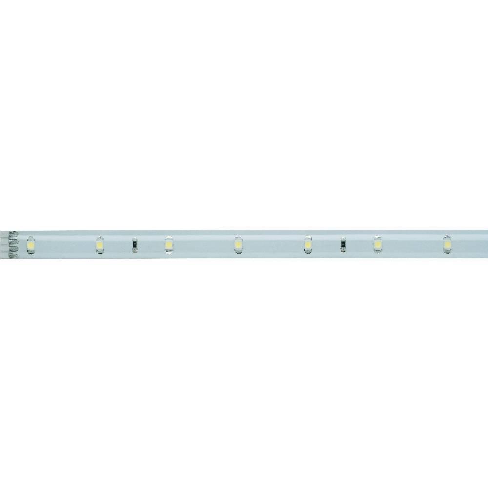 LED traka s utikačem YourLED 70209 Paulmann 12 V 97.5 cm neutralno-bijelo svjetlo