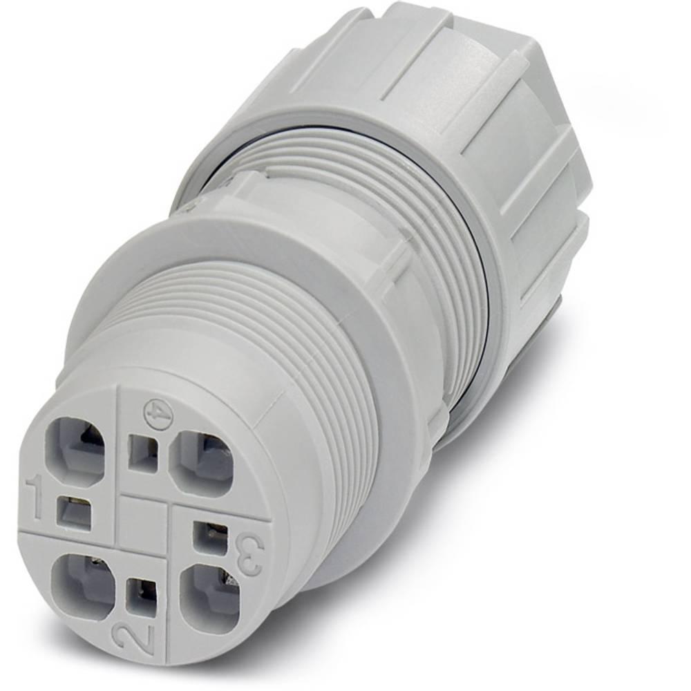 QPD W 4X2,5 9-14 M25 DT GY - Wall bøsning Phoenix Contact QPD W 4X2,5 9-14 M25 DT GY 1 stk