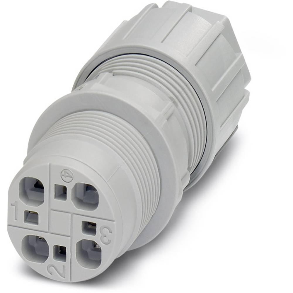 QPD W 4X2,5 6-10 M25 DT GY - Wall bøsning Phoenix Contact QPD W 4X2,5 6-10 M25 DT GY 1 stk
