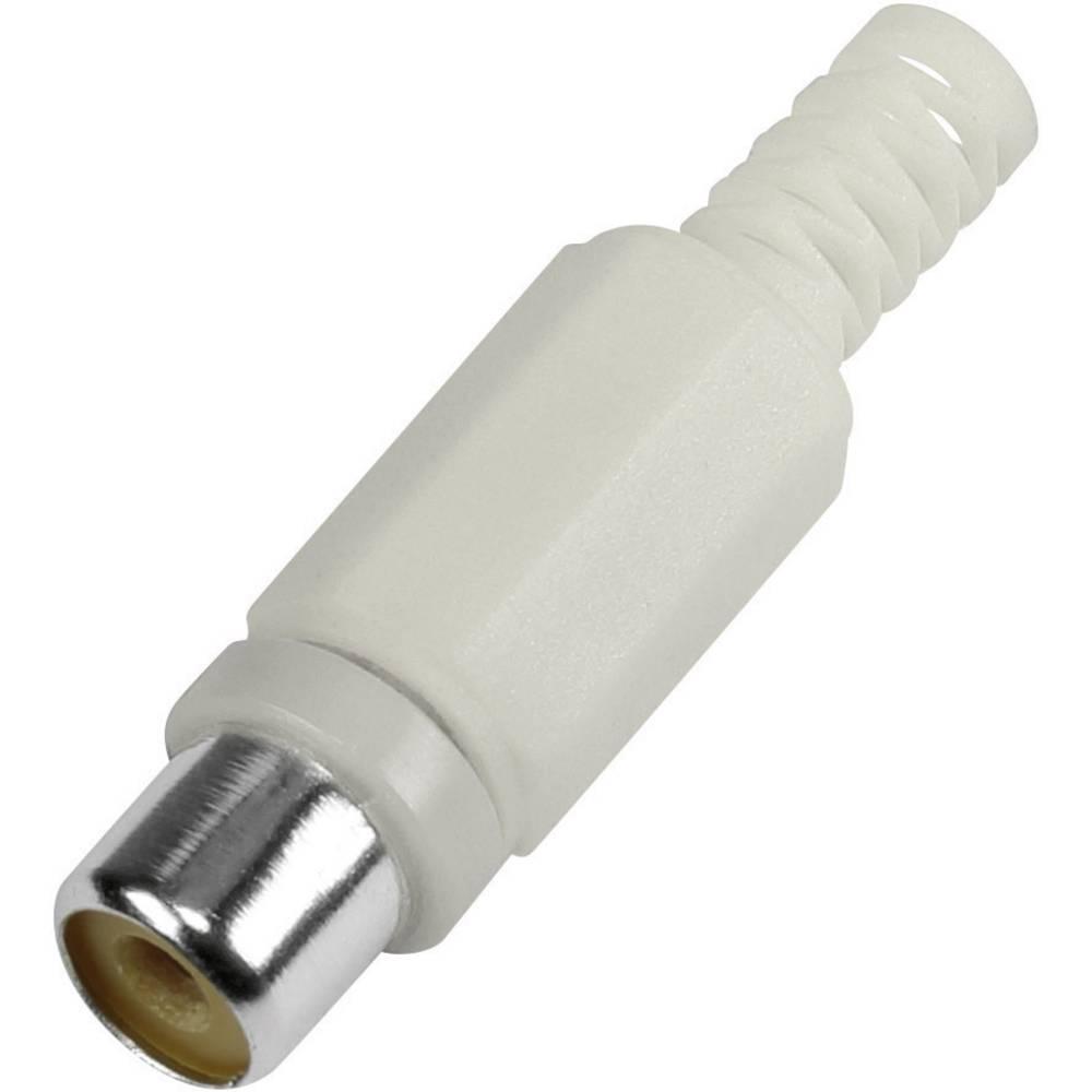 Činč-vtični konektor za vtičnico, raven, število polov: 2 bele barve 1 kos