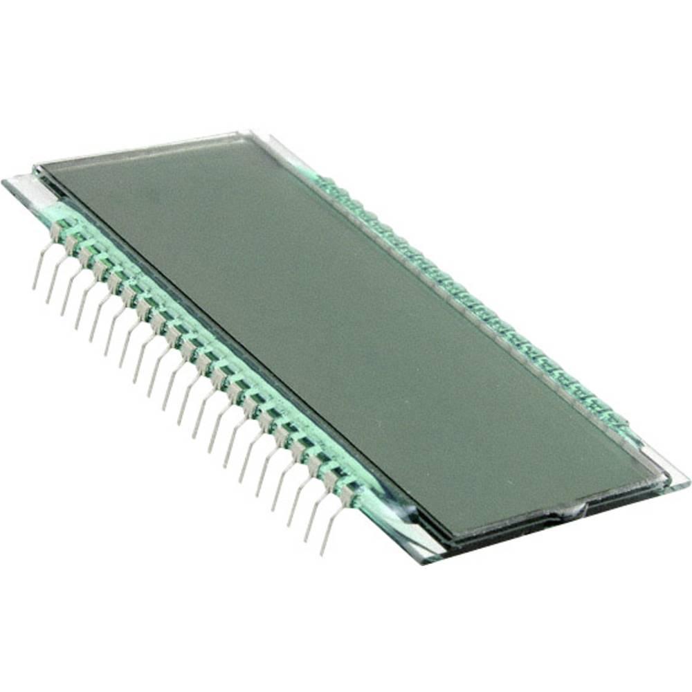 LC-Display (value.1317399) LUMEX LCD-S401C71TR (B x H x T) 38.1 x 8.85 x 69.85 mm Grå