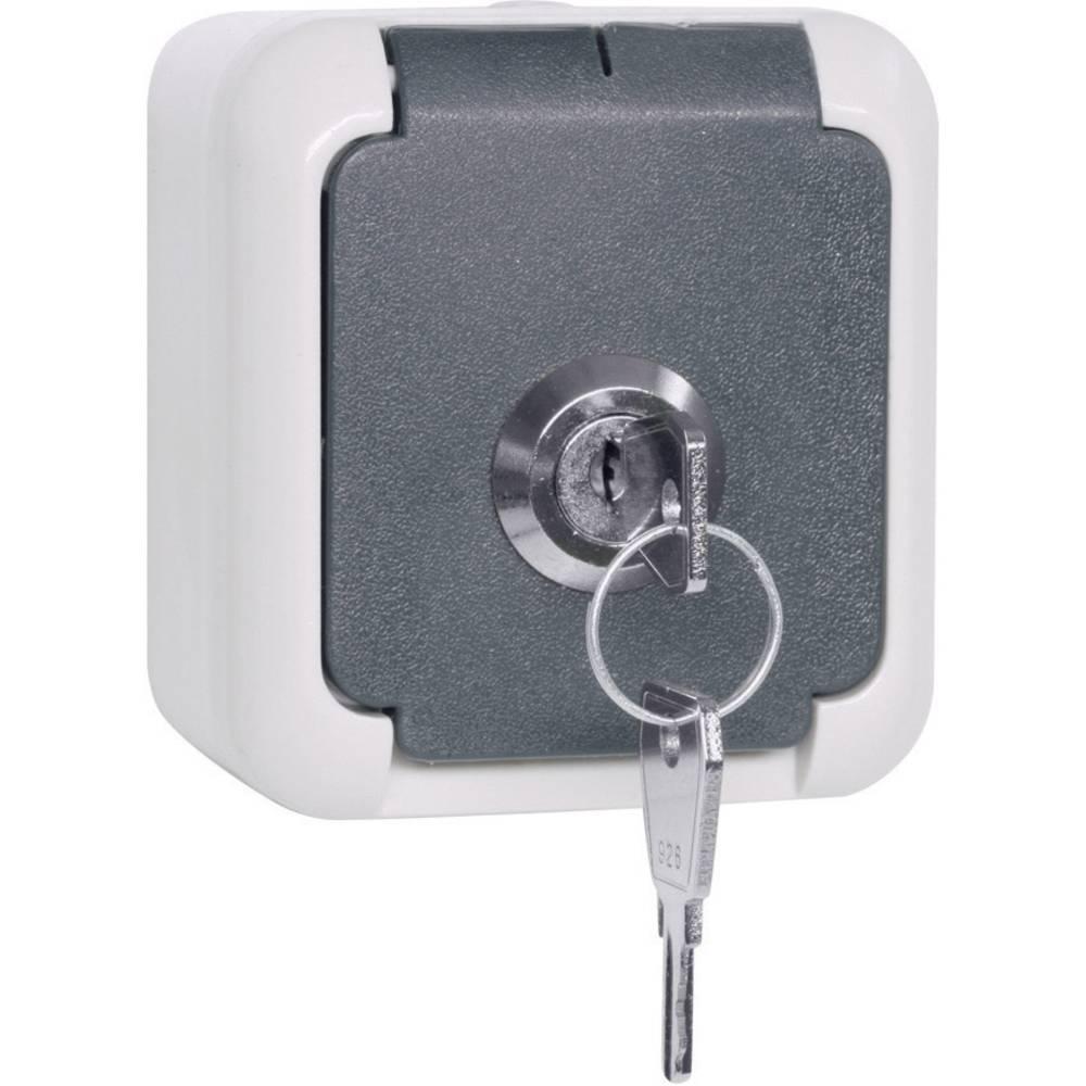Nadometna vtičnica za vlažne prostore z zaklepom, ključ za več ključavnic, sive barve IP44