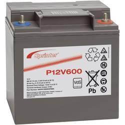 Svinčev akumulator 12 V 24 Ah GNB Sprinter P12V600 NAPW120600HP0MA svinčevo-koprenast (AGM) 169 x 175 x 128 mm M6-vijačni priklo
