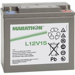Olovni akumulator 12 V 14 Ah GNB Marathon L12V15 NALL120015HM0MA Olovno-koprenasti (Š x V x d) 181 x 167 x 76 mm M6 vijčani prik