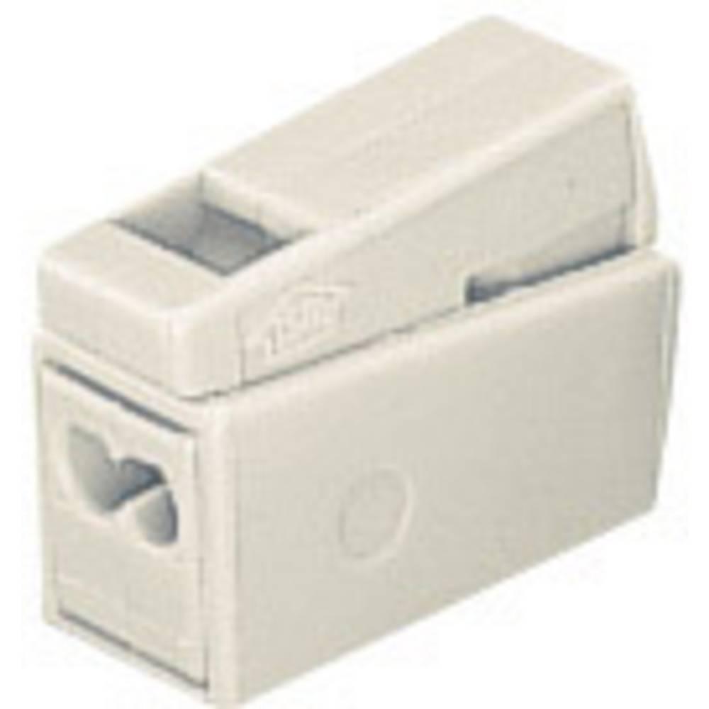 izdelek-elektricna-sponka-za-svetilko2v-1-wago-precni-prerez-masiven