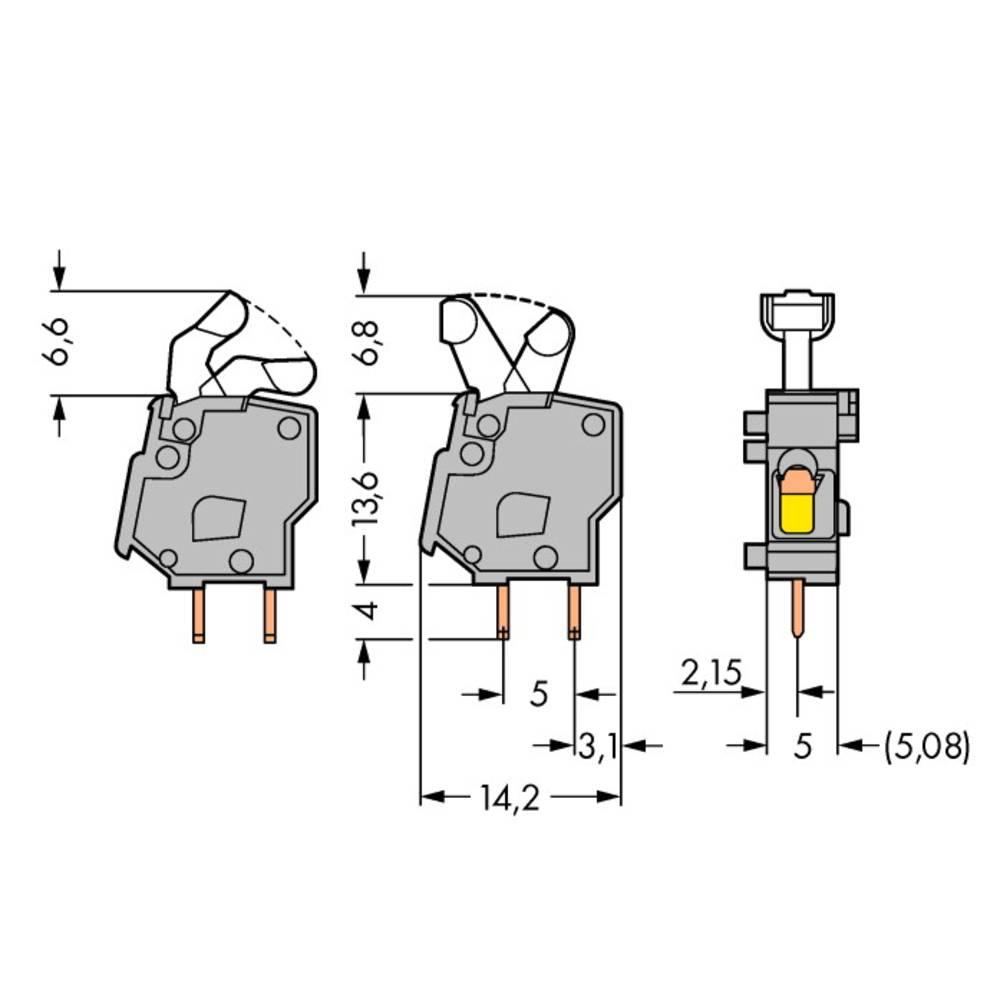 Fjederkraftsklemmeblok WAGO 2.50 mm² Poltal 1 Lysegrøn 500 stk