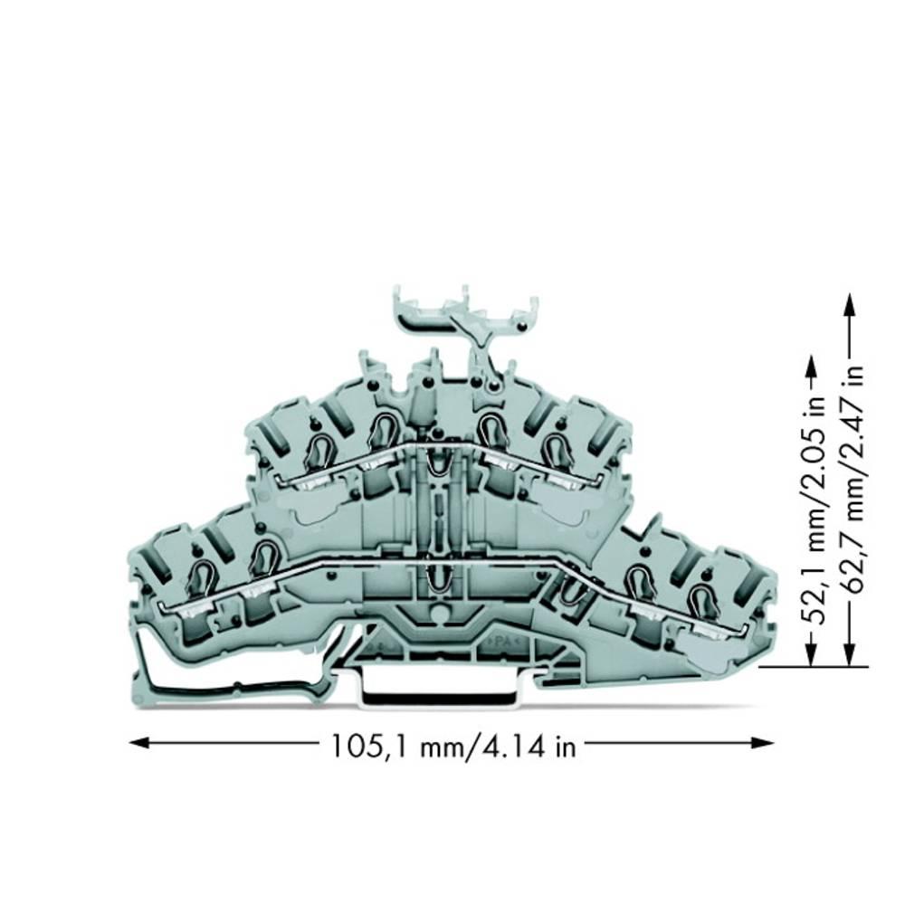 Dobbeltlags-gennemgangsklemme 5.20 mm Trækfjeder Belægning: L, L Grå WAGO 2002-2431 50 stk