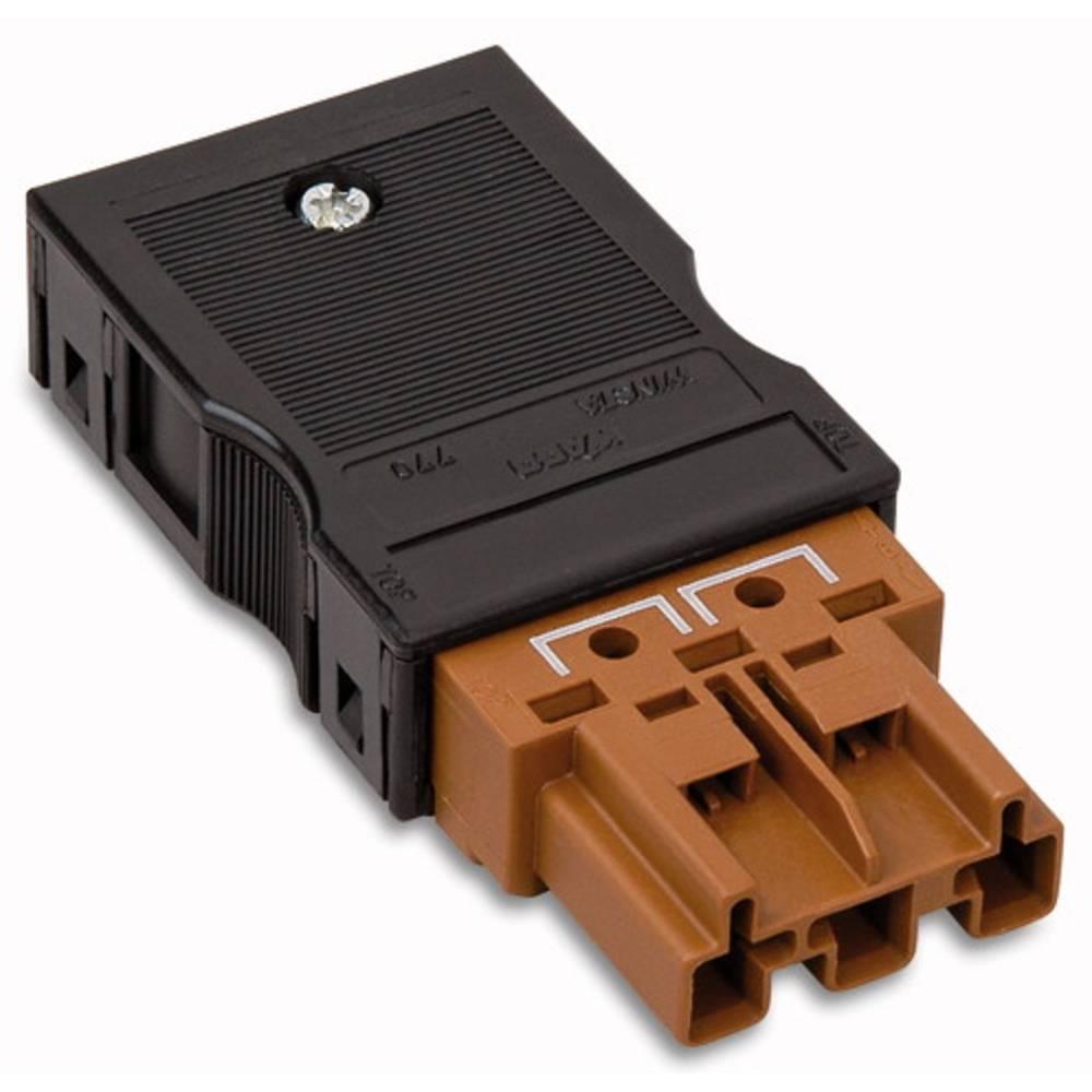 Strømstik Serie (netstik) WINSTA MIDI Stik, lige Samlet poltal: 3 25 A Brun WAGO 25 stk