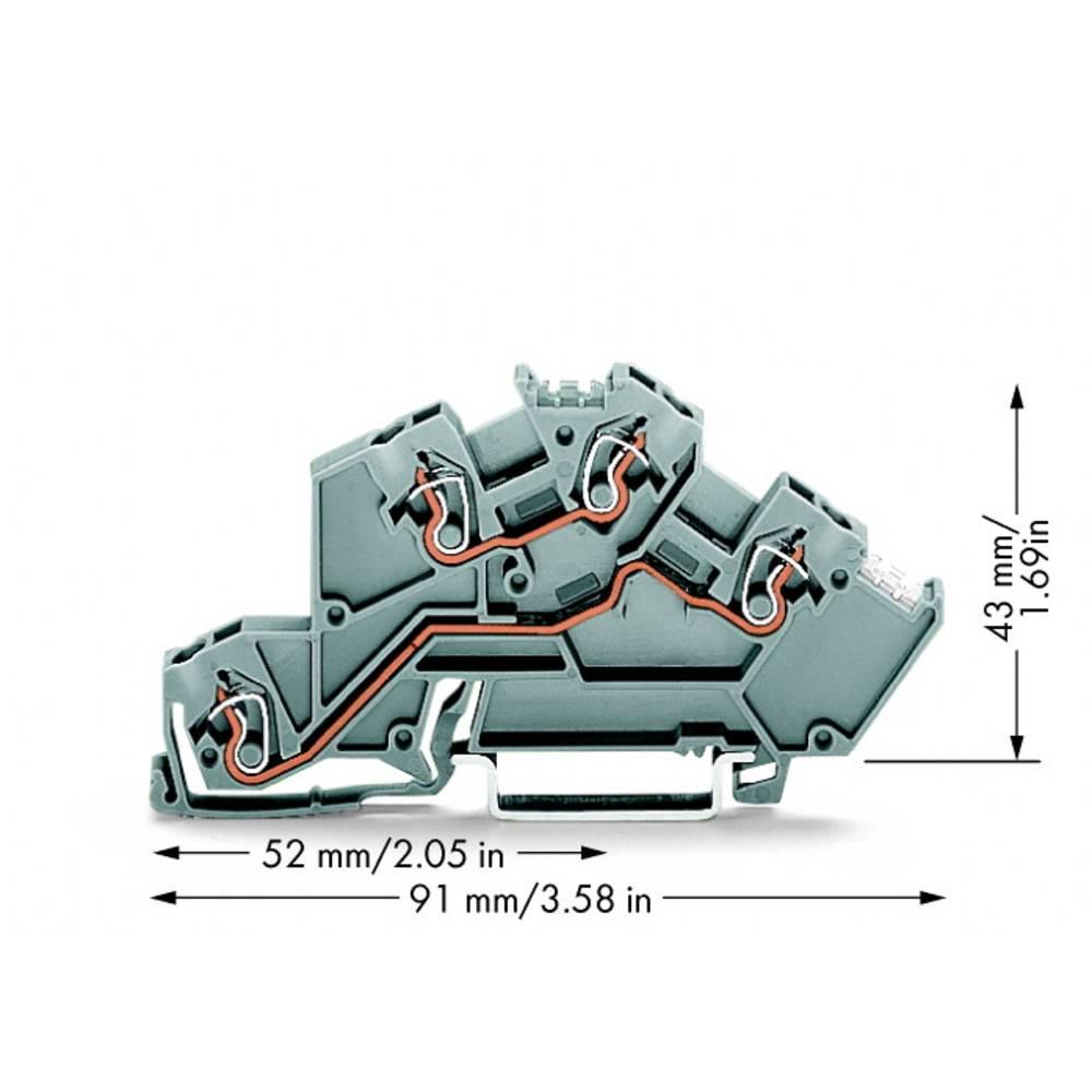 installations-etageklemme 5 mm Trækfjeder Belægning: L, L Grå WAGO 775-642 50 stk
