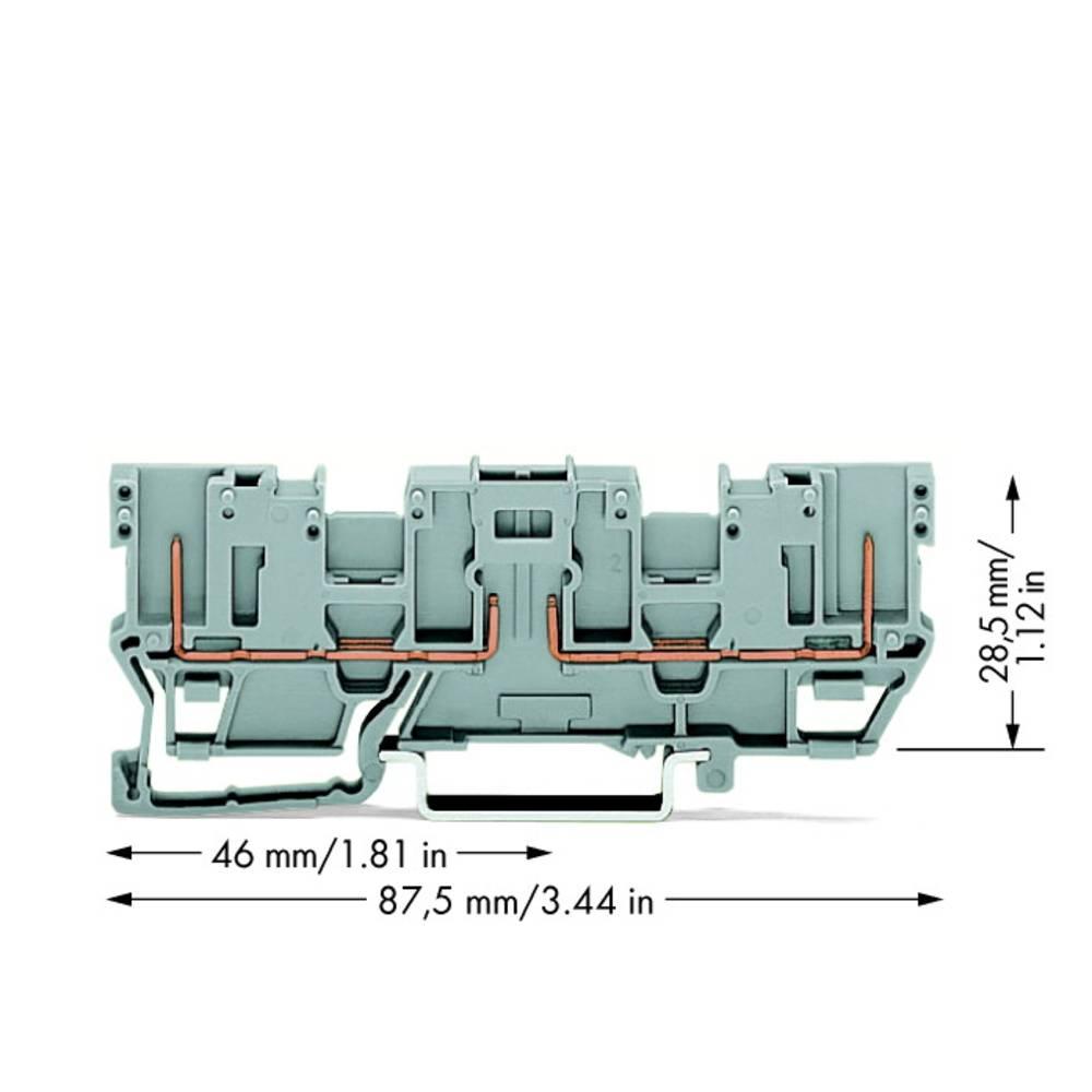 Basisklemme 5 mm Trækfjeder Belægning: L Grå WAGO 769-161 50 stk