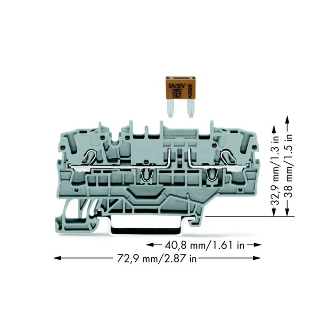Sikringsklemme 5.20 mm Trækfjeder Grå WAGO 2002-1981 50 stk