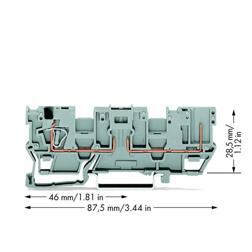 Basisklemme 5 mm Trækfjeder Belægning: L Grå WAGO 769-181 50 stk